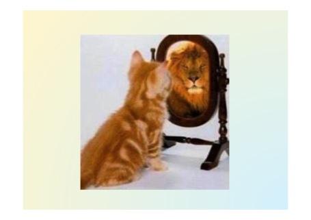 katt-som-lejon